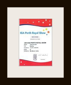 Perth Royal Show 2nd place award for beading